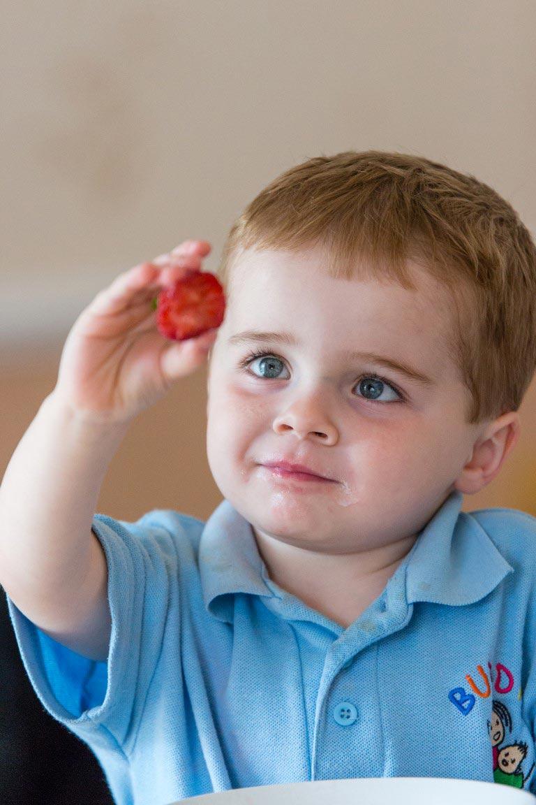 Strawberry - World Photo Day